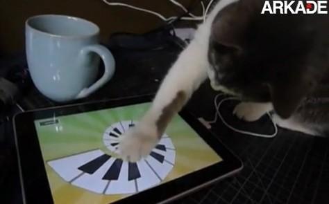Vídeo engraçado de um gato usando o iPad