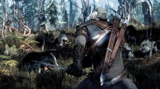 The_Witcher_3_Wild_Hunt_Wolves_1402422294[1]