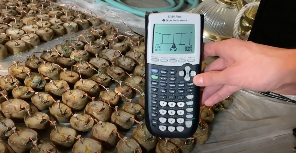 Agora é a hora de jogar Doom em uma calculadora com batatas gerando energia